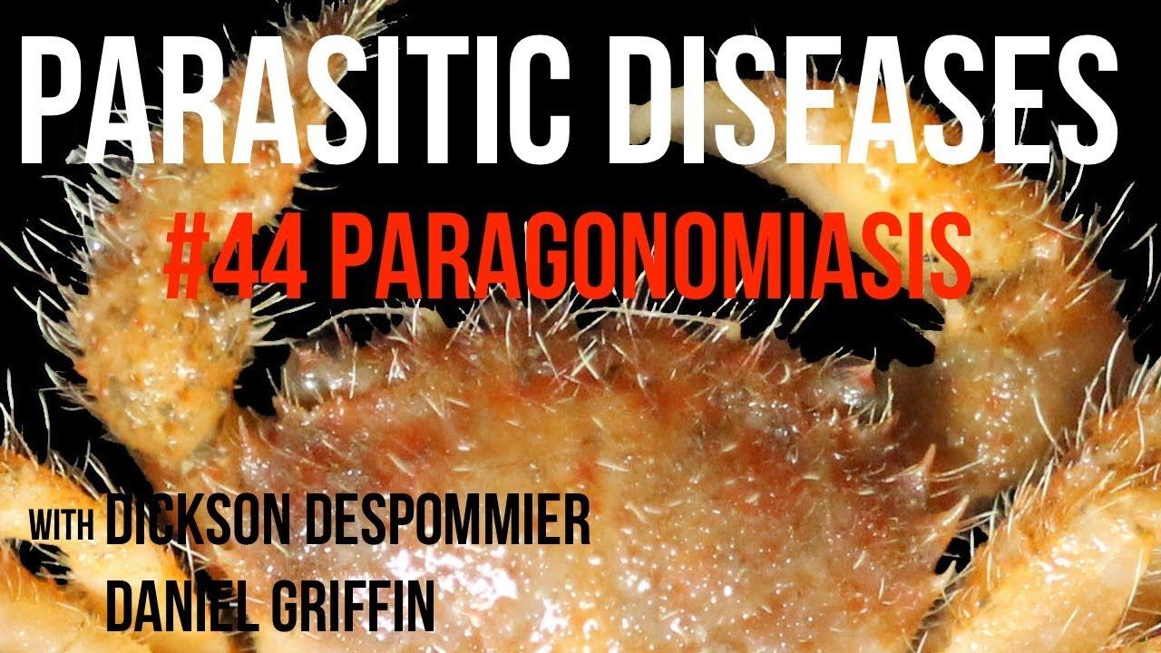kenet v transzkriptum mikroszkópos vizsgálata anti Ascaris korbféreg giardia