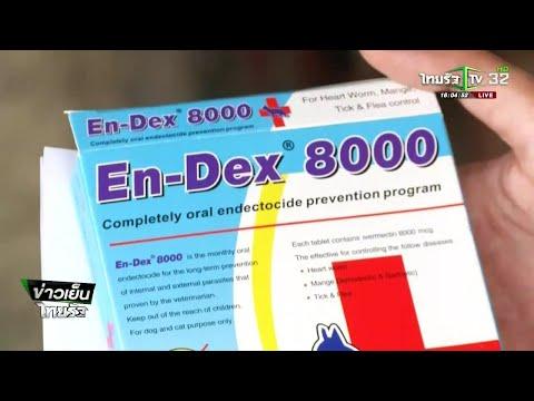 a férgek fajtái és kezelése méregtelenítő gyógyszerek gyógyszertárakban a test tisztításához