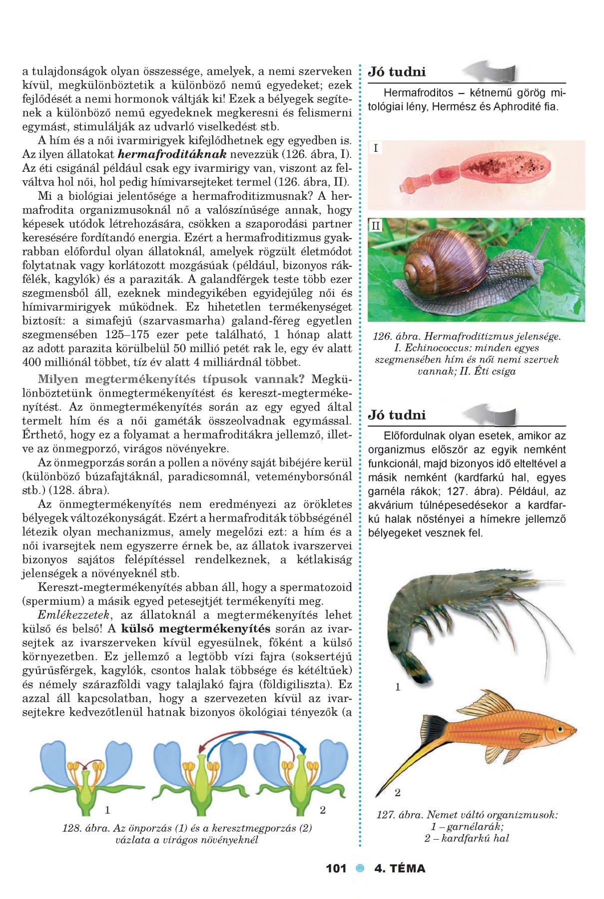 giardia cryptosporidium ag