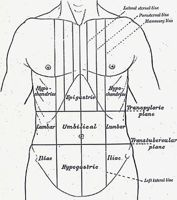 rossz lehelet fájdalom a bal oldalon a hasnyálmirigy parazitáinak kezelése