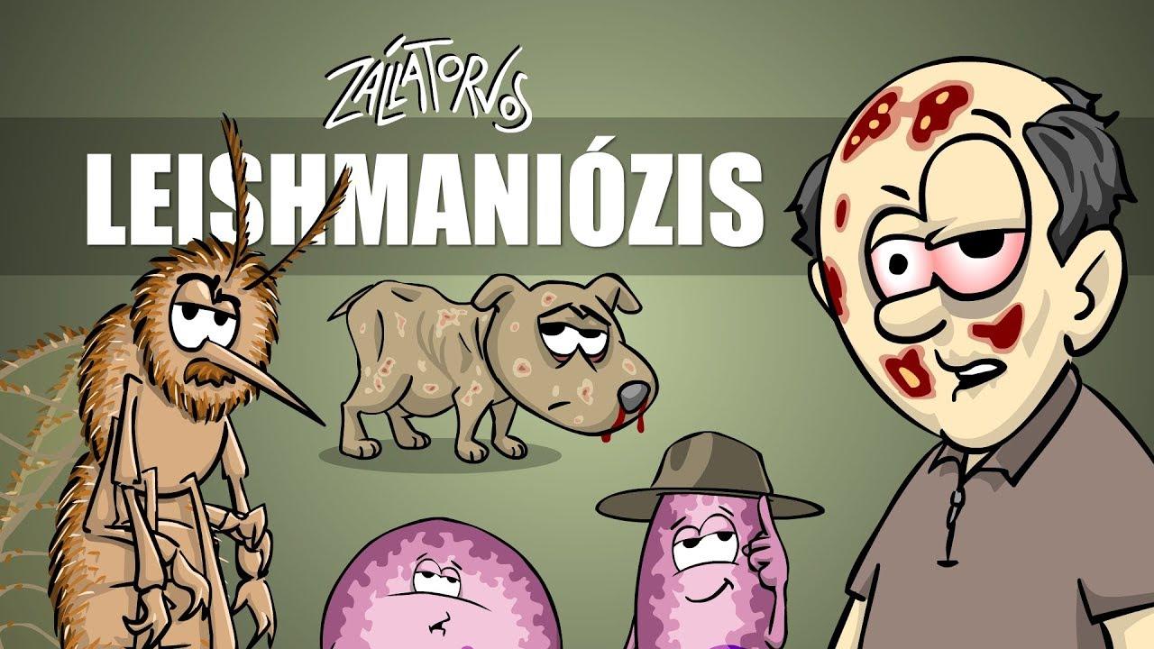 milyen jelek vannak a paraziták testében