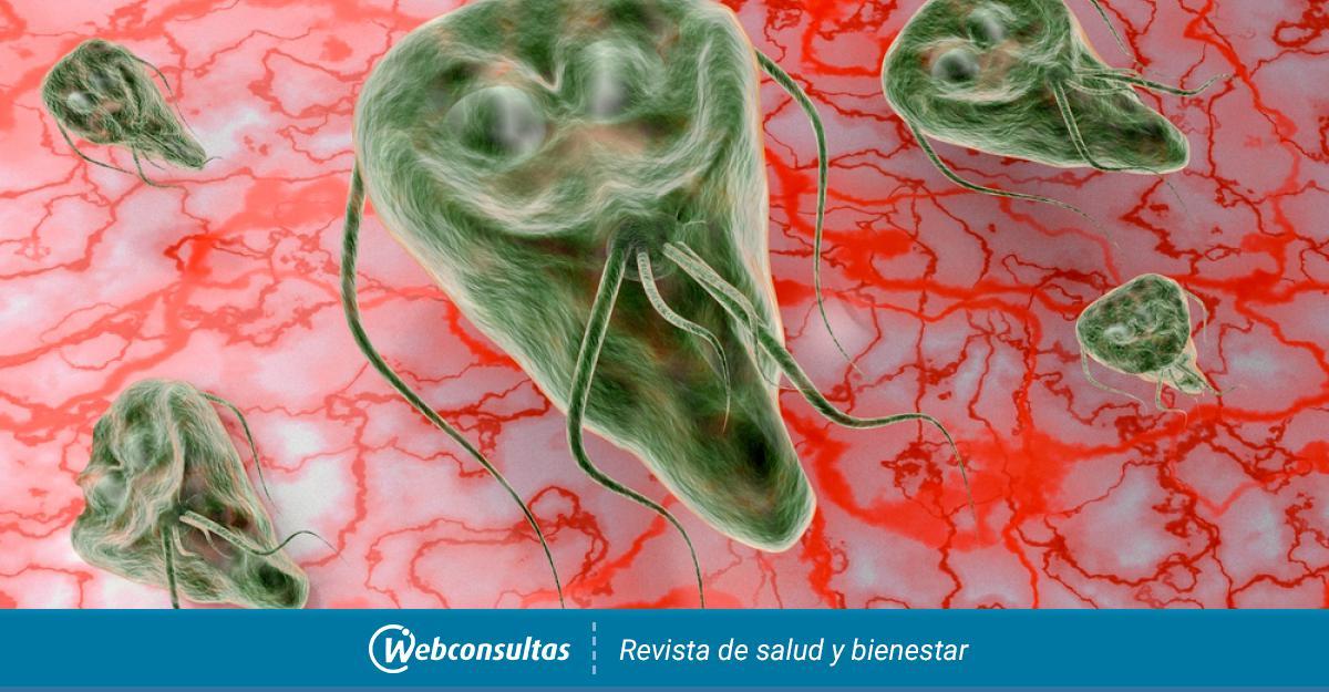 mi az anyag a giardiasis kutatására rossz leheletet kezel